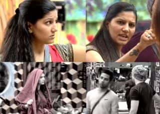 Bigg Boss 11: Sapna Choudhary angrily lashes out at Puneesh Sharma and Bandgi Kalra, calls them SHAMELESS - watch video