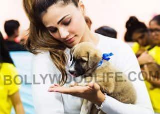 Daisy Shah's cute pics with her new pet are the best thing on the internet today