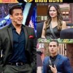 बिग बॉस 11: आज रात सलमान खान साबित करेंगे कि प्रियांक और हिना की दोस्ती केवल धोखा है, देखें वीडियो !!