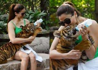 Race 3 diaries: After Katrina Kaif, Daisy Shah brings out inner tigress on the sets of Salman Khan's film - view pics