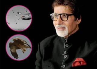 Amitabh Bachchan shoots for Thugs of Hindostan at the Mehrangarh fort with hundreds of majestic eagles for company - view pics