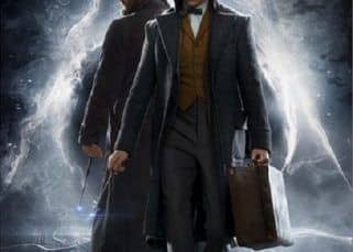 The much awaited Fantastic Beasts : The Crimes Of Grindelwald to release in November