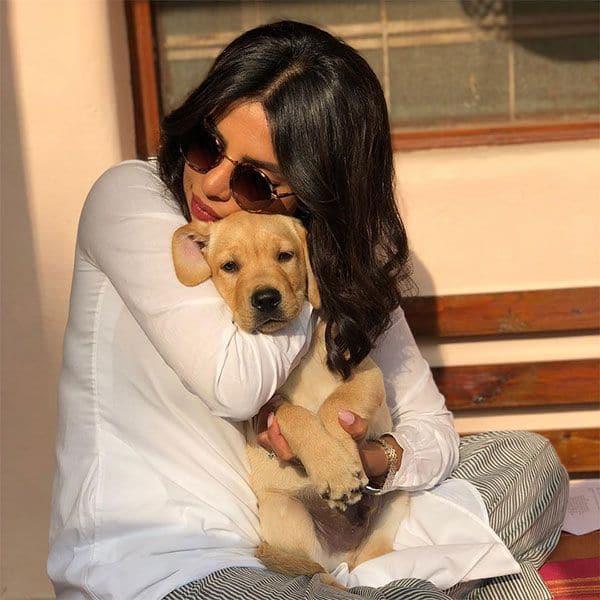Here's how Priyanka Chopra and Farhan Akhtar are 'masking their emotions'