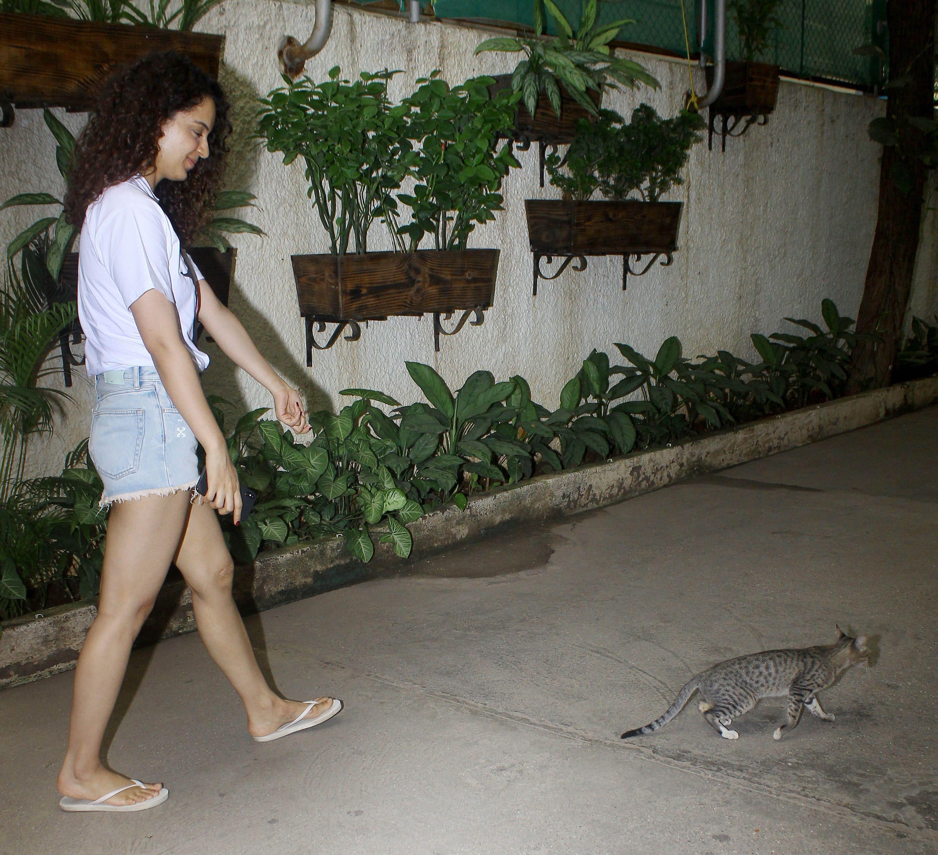 बिल्ली के पीछे दौड़ती नजर आई एक्ट्रेस