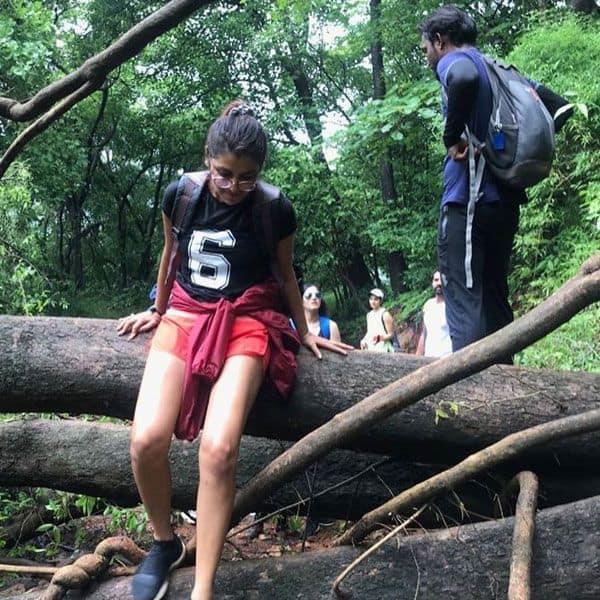 जंगल के लिए मजे