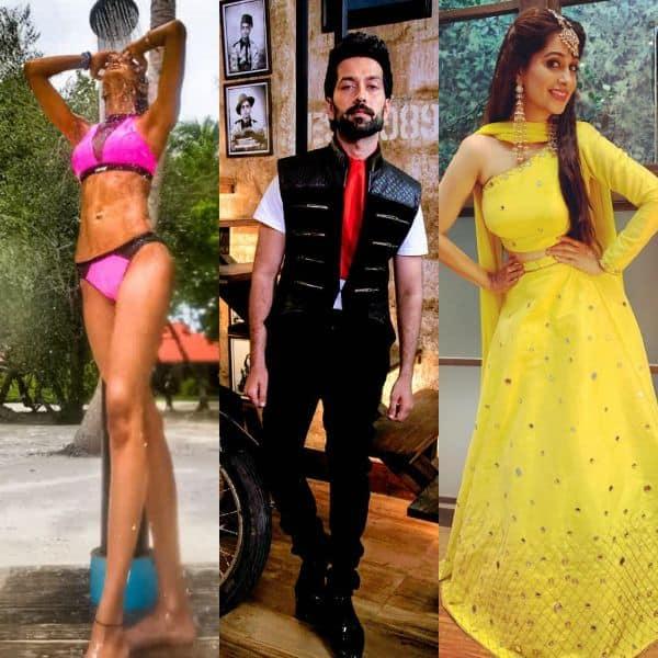 Erica Fernandes, Nakuul Mehta, Dipika Kakar- Here are the TV