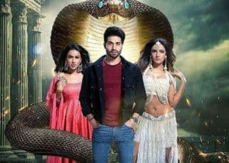 Naagin 4 15 December 2019 Written Update of Full Episode: Nayantara finds