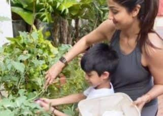 Shilpa Shetty teaching son Viaan to pluck brinjals is the most adorable #MotherSon goal of the day — watch video