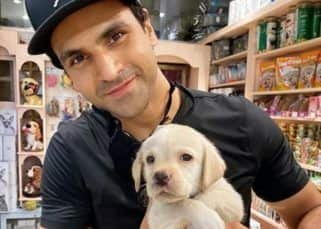 Vivek Dahiya bonding with his dog over video call is the best thing you'll see today