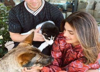 Priyanka Chopra and Nick Jonas bring home another pet, a mixed breed Siberian Husky