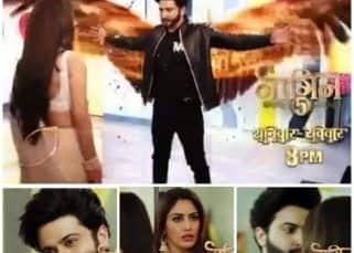 Naagin 5 written update, 17th October 2020: Bani questions Veer's identity as he enjoys watching the red stone attack Balwant and others
