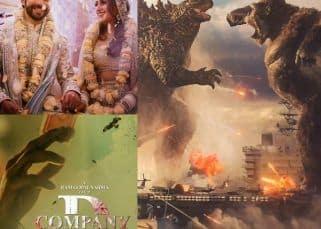 Trending Entertainment News Today: Varun Dhawan and Natasha Dalal wedding, D Company trailer, Godzilla vs. Kong trailer
