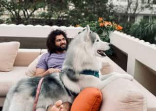Mahesh Babu, Mohanlal, Samantha Akkineni, Vijay Deverakonda — these 13 South stars with their adorable pets will melt your heart
