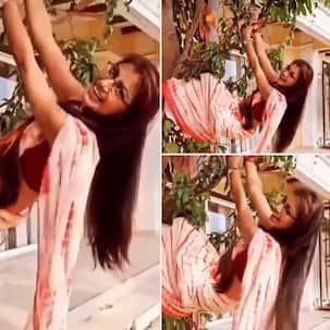 Kumkum Bhagya: गोवा पहुंचते ही प्रज्ञा से मोगली बनीं Sriti Jha, बिना डरे पेड़ पर झूलती आई नजर