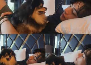 BTS' V aka Kim Taehyung is a doting dad to Teacup Pomeranian, Yeotan – view pics