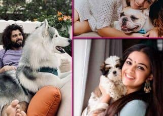From Samantha Akkineni to Vijay Deverakonda: Meet the pawsome friends of your favourite South stars