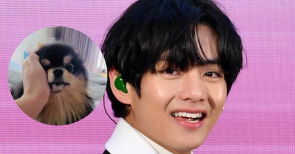 BTS' V treats giveaway winner with Yeotan's video late in the night and ARMY cannot handle Tannie's cuteness – view tweets