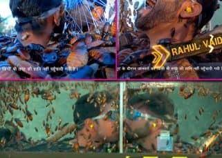Khatron Ke Khiladi Promo: Rohit Shetty के डर से पस्त Abhinav Shukla और Rahul Vaidya, कट्टर दुश्मनी भुलाकर कर डाला Kiss