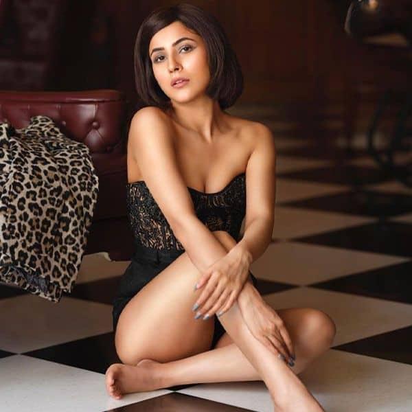 शहनाज गिल (Shehnaaz Gill) को खरी खोटी सुना रहे हैं ट्रोलर्स