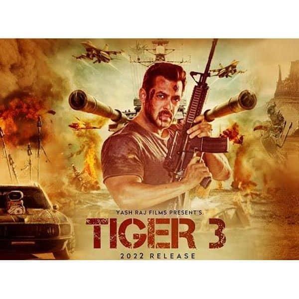टाइगर 3 (Tiger 3)