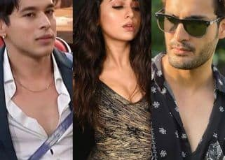 Bigg Boss 15: Doctor, lawyer, engineer — The educational qualifications of Umar Riaz, Pratik Sehajpal and Tejasswi Prakash and more contestants prove this is a season of skilled professionals