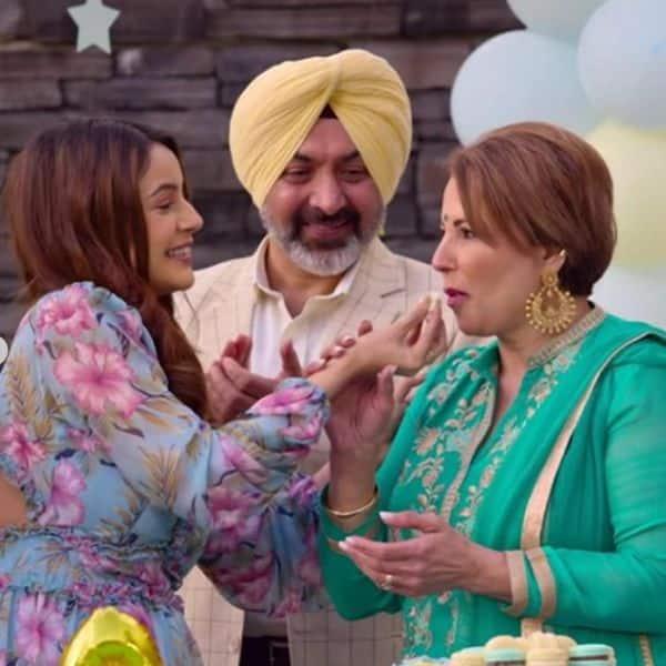 फिल्म हौसला रख (Honsla Rakh) को देखने के लिए बेताब हैं फैंस