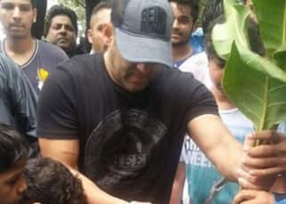 Salman Khan planted trees as a part of BMC's initiative in Mumbai, see pics!