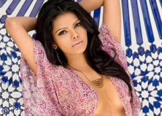 Sherlyn Chopra Hot & Sexy Photos