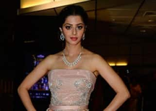 SIIMA 2016 Day 2: Tollywood celebs dazzled in their ultra-glamorous avatar on red carpet, see pics!