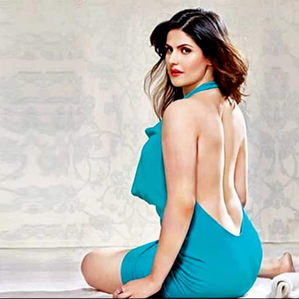 Zarine Khan in a super hot pic from a photoshoot