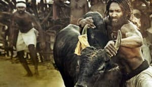 ARAVAAN movie review: Is worth a watch