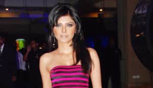 Sherlyn Chopra finally bags a lead role