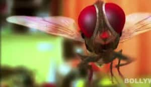 SS Rajamouli's Eega to be screened at Cannes, Shanghai film festivals